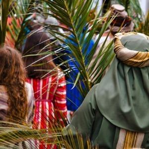 Foto de personas portadoras de palmeras por Brady Leavell en Unsplash