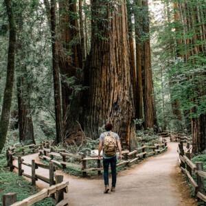Foto de un hombre parado en un bosque eligiendo un camino por Caleb Jones en Unsplash