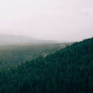 Foto montañas con árboles de Jay Mantri en Unsplash