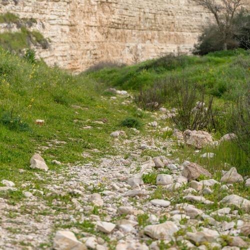 Camino pedregoso en Israel que conduce a un muro.