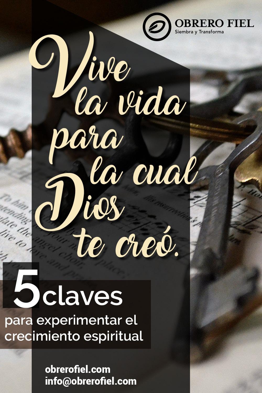 5 pasos simples