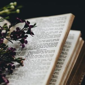 Foto la biblia con flores de Nathan Dumlao en Unsplash