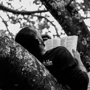 Hombre leyendo en un árbol Foto de Gift Habeshaw en Unsplash