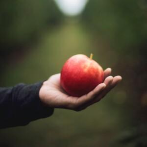 Foto de una mano sosteniendo una manzana por Kari Shea en Unsplash