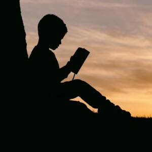 silhouette of a boy sitting next to a tree reading a Bible