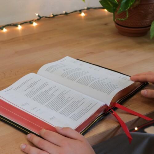 hands holding an open Bible on desk