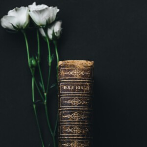the spine of an old Bible and white flowers