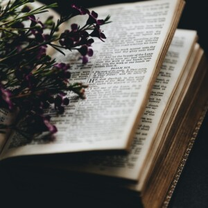 Open Bible with flowers on top