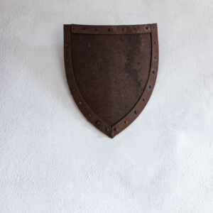brown shield with white background