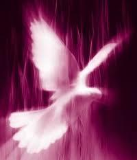 Cuál es el ministerio del Espíritu Santo