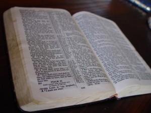 holly-bible-book-725x544