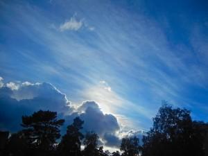¿Cómo podemos ser transformados por Dios?