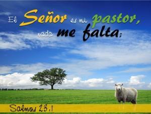 Salmos 23.1