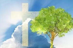 Caracteristicas de una iglesia saludable