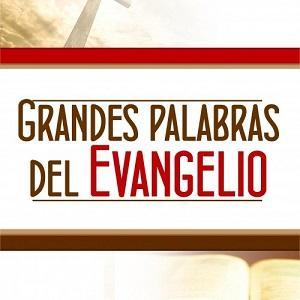 Grandes palabras del evangelio: Puestos los ojos en Jesús